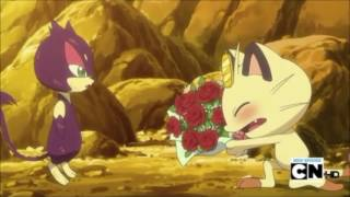 Meowth and Oshawott ask Purrloin out