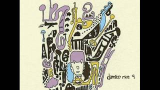 Watch Damien Rice Elephant video