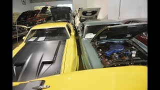MASSIVE HOARD OF BARN FIND MUSCLE MUSTANG, FORD & SHELBY