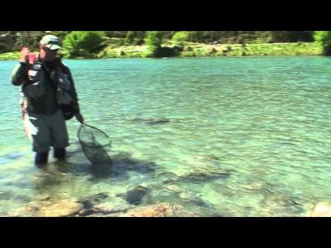 Fly Fishing NZ. Big river - big fish from Nelson/Marlborough