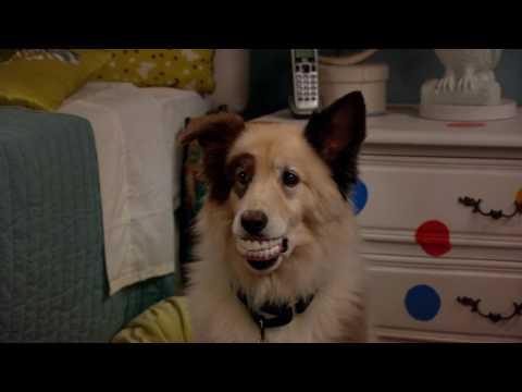Смотри Сериалы Disney Все Серии Подряд - Собака точка ком - Сезон 1 Серии 4, 5, 6