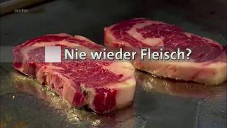Chăn nuôi: Thức ăn cho người, thức ăn cho gia súc
