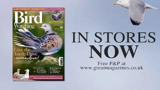 Bird Watching magazine July 2018