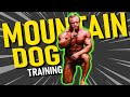 """What is """"Mountain Dog Training"""" and WHY IT WORKS"""