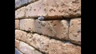 NEW Optical Illusion Confusing Everyone (Cigar in Brick wall) ANSWER