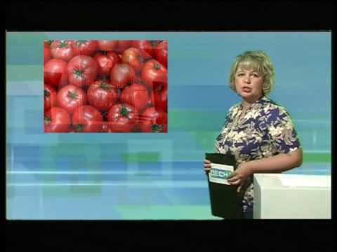 Десна-ТВ: День за днем от 3.06.2016