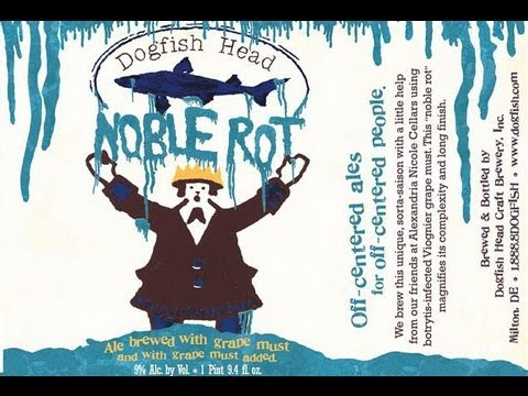 Dogfish Head Noble Rot (A Wine Beer!) | Beer Geek Nation Beer Reviews Episode 299