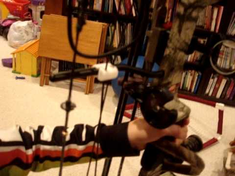 2010 PSE Stinger Compound Bow