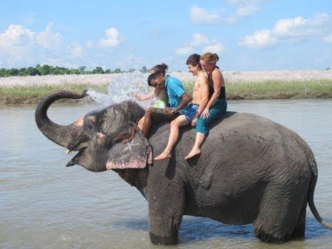 Nagarhole /  Karnataka Tourism/ India.