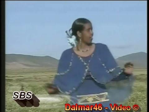 Hees Somali - Stahil Cali Ibrahim