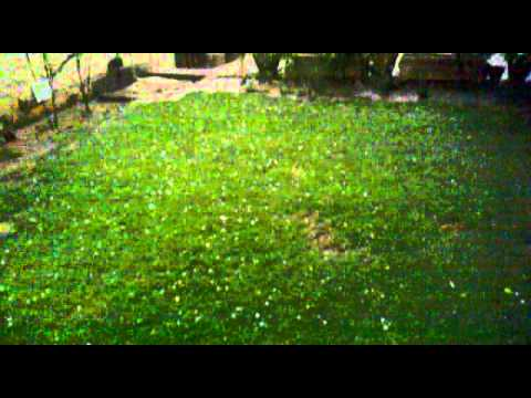 Breaking News: Hailstorm in Lahore (Today's Video) - Awesome Mausam =P