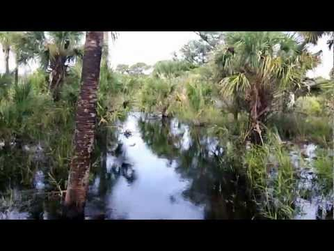 Myakka River State Park, overnight in the backcountry