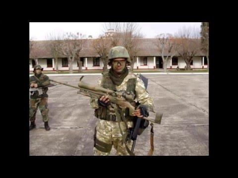 Infanter�a del Ejercito 2013