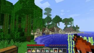 Minecraft - Angry Birds Mod