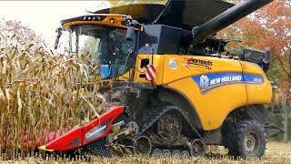 New Holland CR 10.90 on tracks | Corn and Corn Cob Harvest | Aernouts Tax