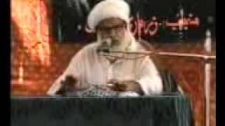Sindhi Majlis Allama Sabit Ali Najafi at Syed Sher Ali Shah Daur on 8th Rajab June 2011 Part 2