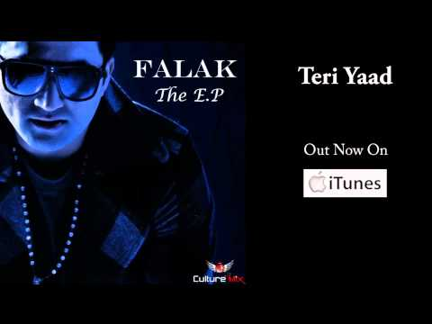 Teri Yaad - Falak The EP