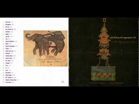 Arto Lindsay Trio - Absurd Children