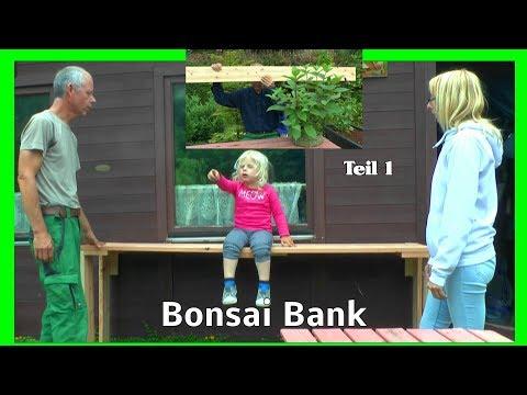 Bonsai meine erste Bonsai Bank DIY selber bauen ganz einfach