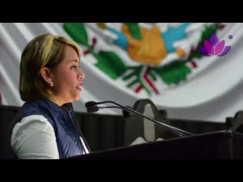 Primer Informe De Actividades Legislativas Perla Tun Diputada Local Distrito VI 2013 2014