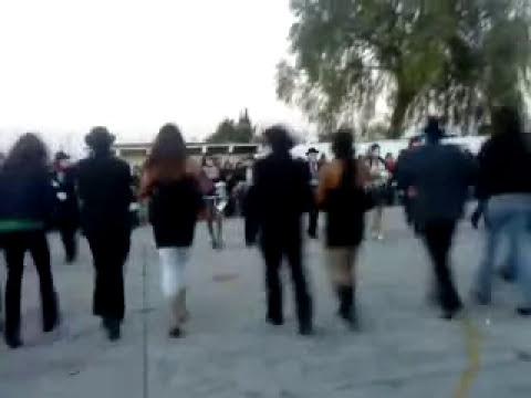 carnaval febrero 2010.MP4
