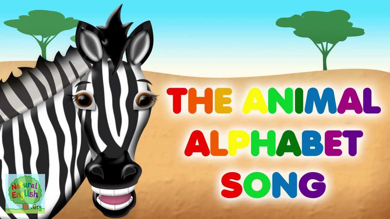 The alphabet song learn english