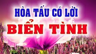 BIỂN TÌNH - Hòa tấu có lời - PHONG BẢO Official