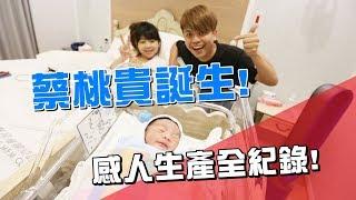 【蔡阿嘎新手爸媽日記#20】蔡桃貴誕生啦!感人生產過程全紀錄!