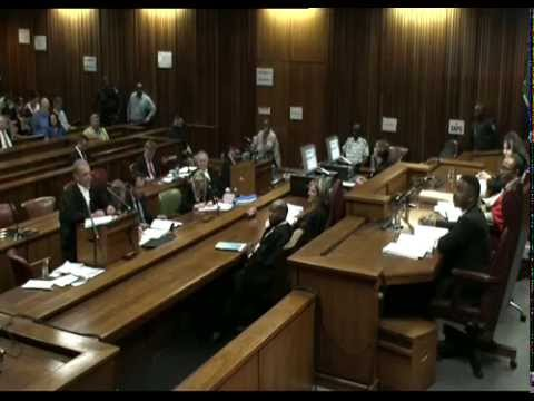 Oscar Pistorius Pre-Sentencing Arguments: Tuesday 14 October 2014, Session 2