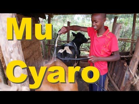 Rwanda Countryside ||  Mu Cyaro
