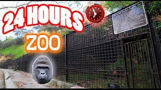 (VOICES!) 24 HOUR OVERNIGHT in ABANDONED ZOO GONE WRONG | SCARY OVERNIGHT CHALLENGE in a HAUNTED ZOO