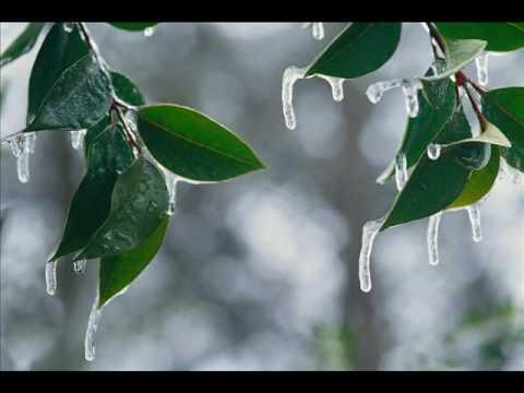 Enya - Amid the falling snow