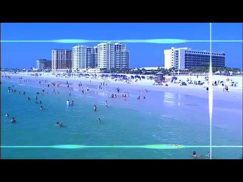 Visit Tampa & St. Petersburg