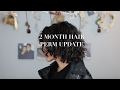 BEAUTY: 2 Months Curly Hair Perm Update | Louise Lee MP3