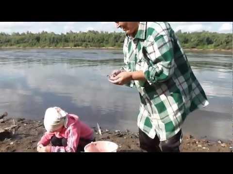 видео ловля на палочку