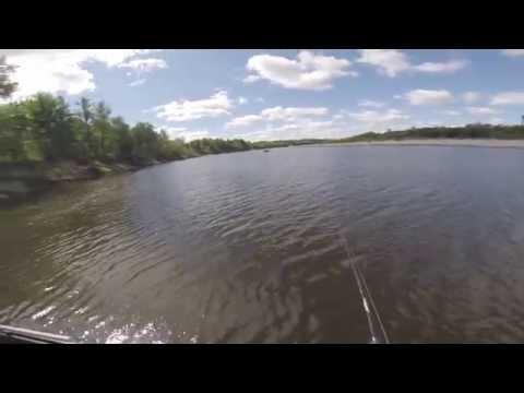 отдых и рыбалка на реке ветлуга