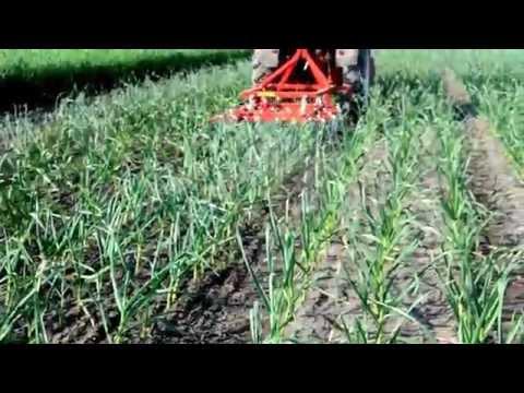 Garmach garlic weeding machine