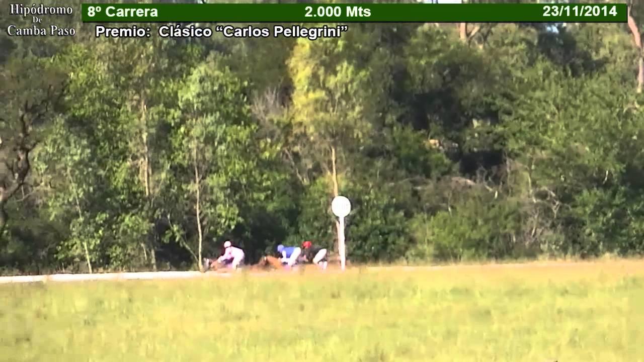 Clasico Carlos Pellegrini 2014 Clásico Carlos Pellegrini