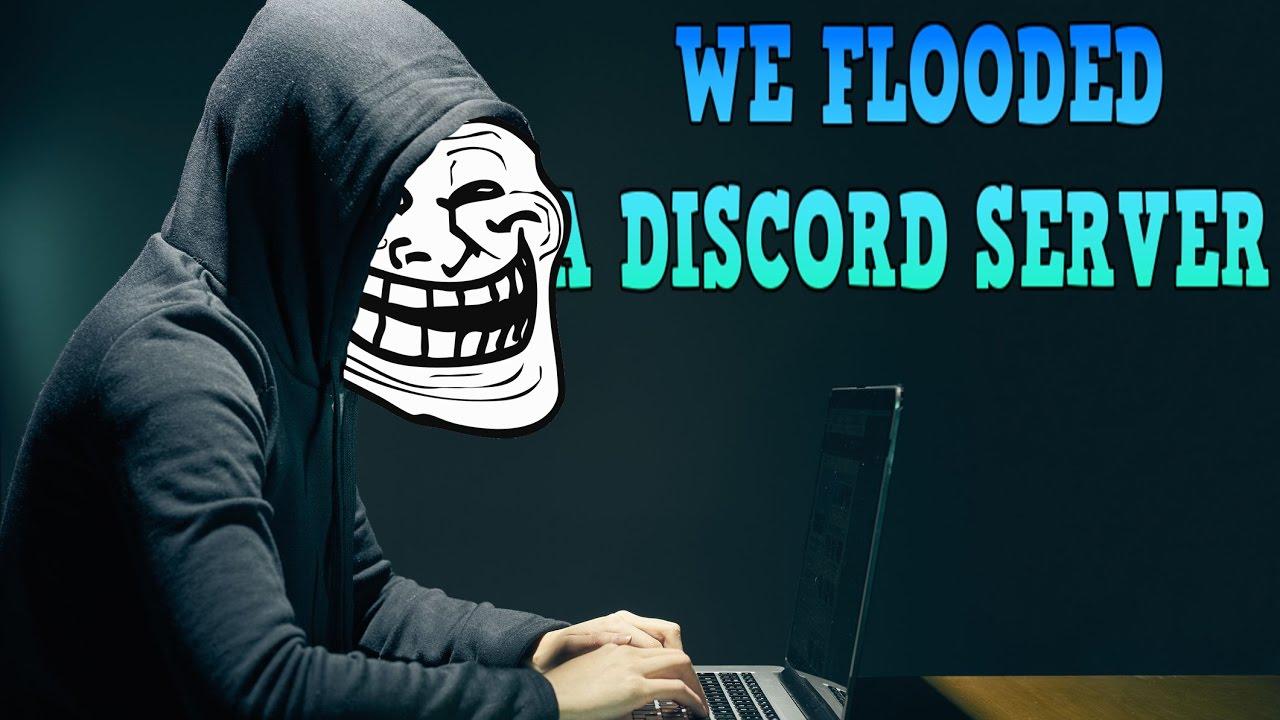 musik bot discord