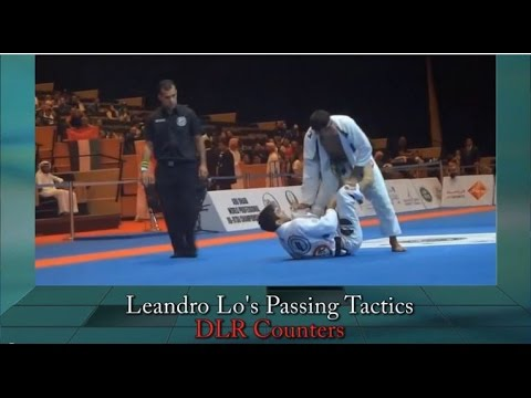 A Complete Study On Leandro Lo's Highly Effective Guard ...