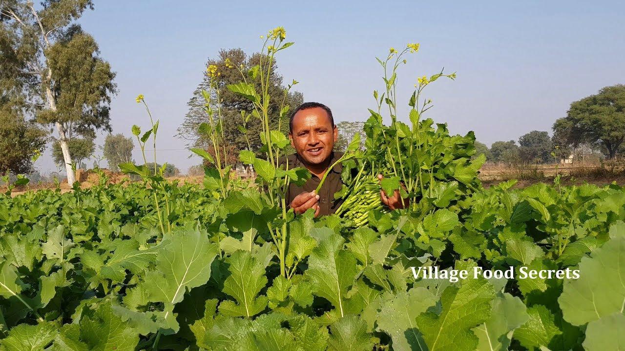 Gandlan Da Saag aur Bajre ki Roti | Saag Saag Sarson Ka Saag | Grandma Style | Village Food Secrets