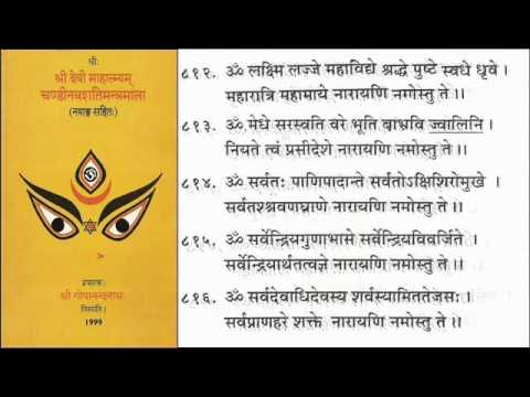 Sanskrit - Sri Narayani Stuthi video