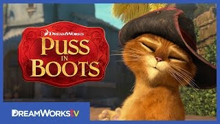 Don't Fall In Love With Me | NEW PUSS IN BOOTS