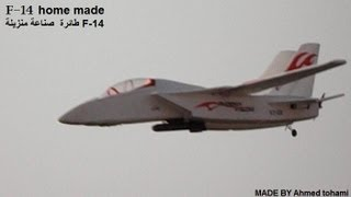 Rc Plane F-14 arabmade twin motor