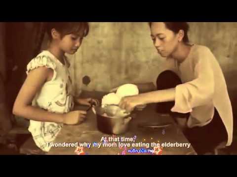 [share Sub]nơi ấy Con Tim Về-hồ Quang Hiếu|clip Cảm động Nhất Về Mẹ video