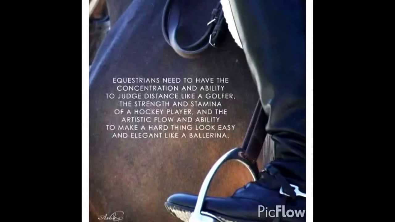 Things equestrians love