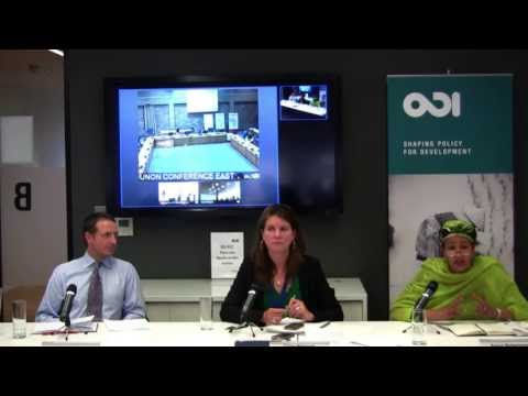 Discussion Part 3 - After the post-2015 HLP report: responses from around the world