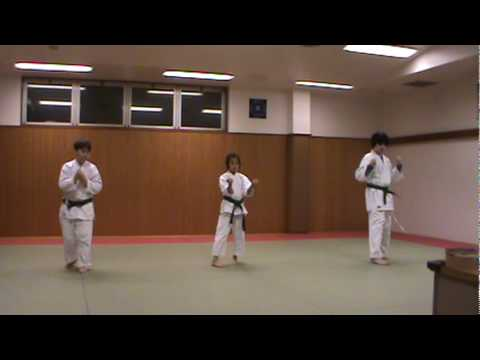 Karate Purple Belt Test Kata