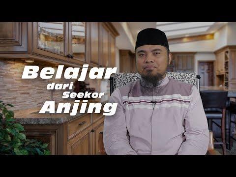 Mutiara Nasihat: Belajar dari Seekor Anjing - Ust. Fadlan Fahamsyah, Lc., M.H.I