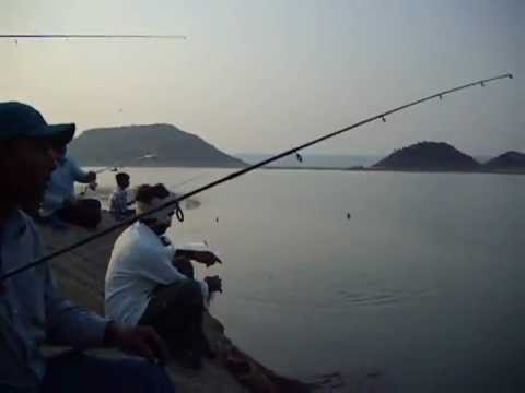 Tilapia Fishing   Nagarjuna Sagar, India   Part 1